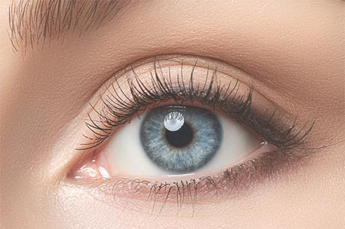 Lettie Stoykova Banbury Permanent Makeup Eyeliner w500